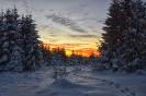 Winter...Januar 2017...